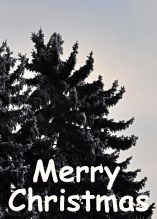 merry-christmas-vertical-6.jpg
