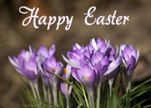 easter-wishes-greetings-cards-images-free_030.jpg