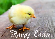 easter-wishes-greetings-cards-images-free_038.jpg