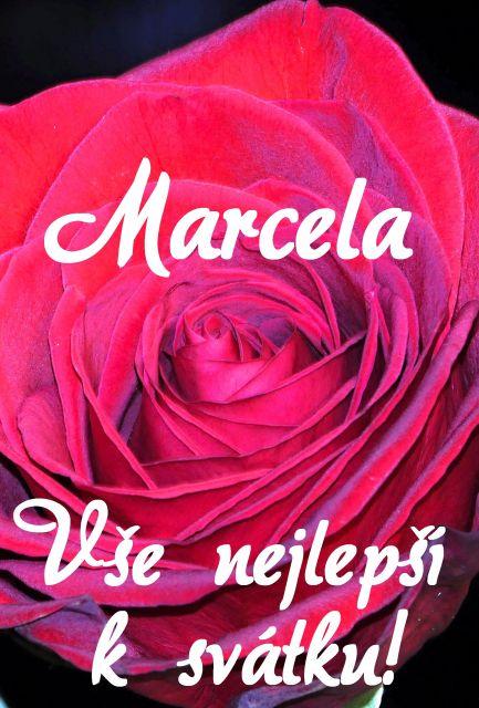 přání k svátku marcela Přání k svátku podle ženských jmen   Přání k svátku Marcela  přání k svátku marcela