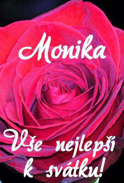přání k svátku monika Přání k svátku podle ženských jmen   Přání k svátku Monika  přání k svátku monika