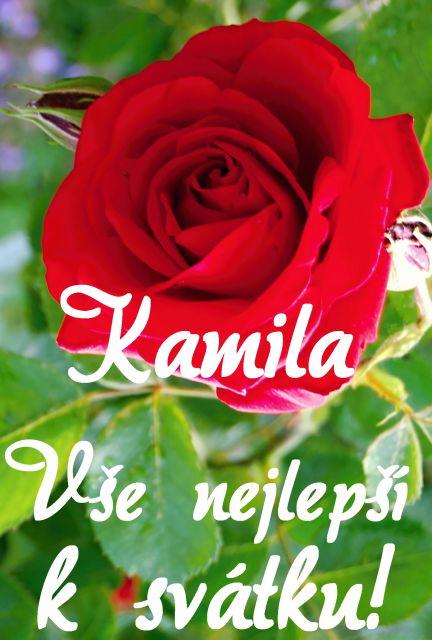 přání k svátku kamila Přání k svátku podle ženských jmen   Přání k svátku Kamila  přání k svátku kamila